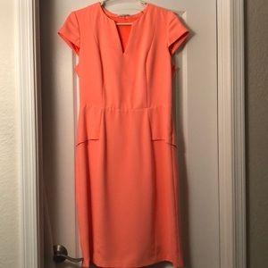 Tahari peplum dress